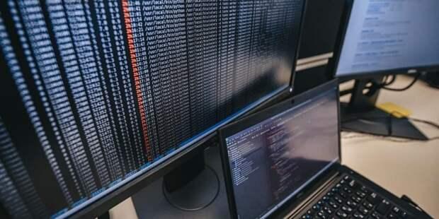 Зяббарова: Поступления в бюджет Москвы от IT-отрасли в январе-феврале вырос на 11,2%. Фото: Е. Самарин mos.ru