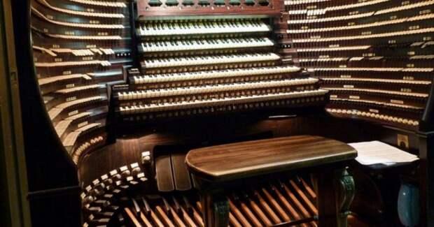 Как устроен орган? 4 факта об инструменте, в который можно зайти