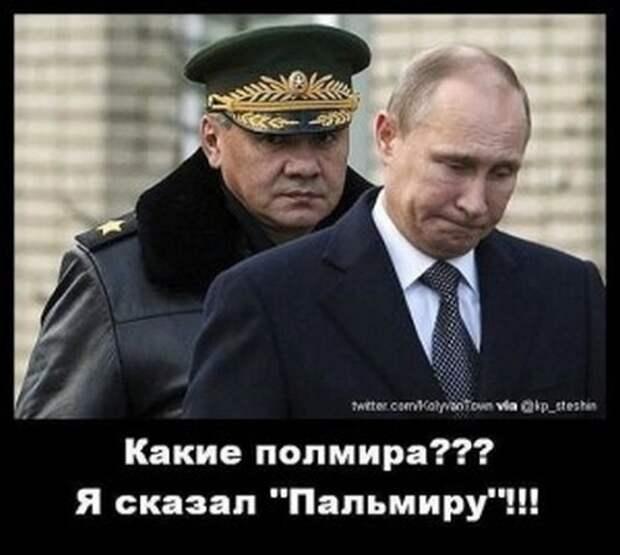 Теперь я понимаю, почему Путин вывел войска из Сирии