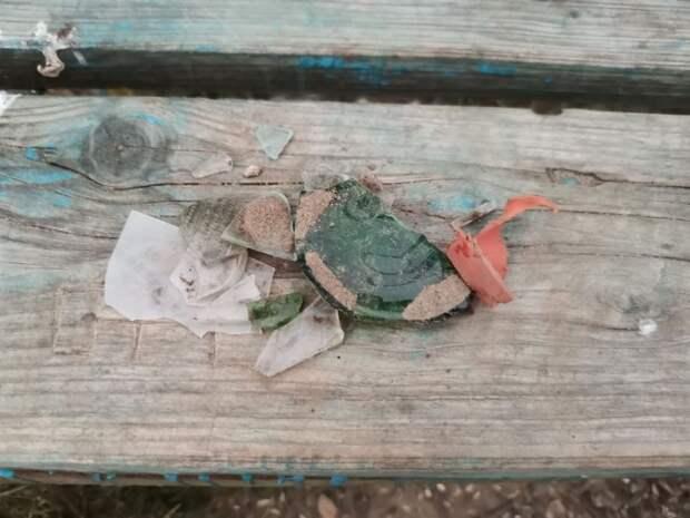 На собачьей площадке в Жулебино несколько лет закапывают битое стекло