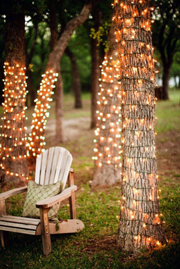 Волшебная подсветка деревьев.