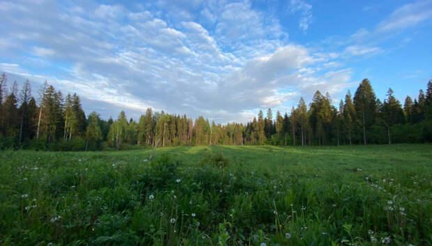 Земельные инспекторы Подмосковья приняли участие в онлайн‑семинаре