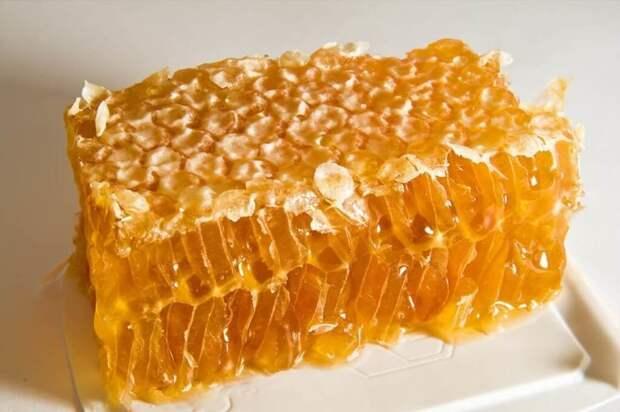 Мёд продукты, способы хранения продуктов, холод, холодильник, хранение