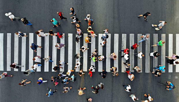 В Савеловском появится новый пешеходный переход и островок безопасности