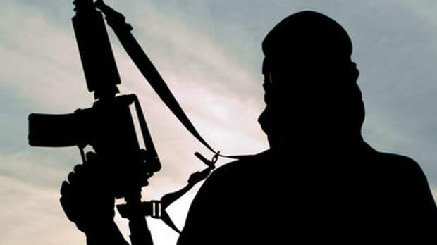 Лагерь террористов «Исламского государства» нашли через Google Earth