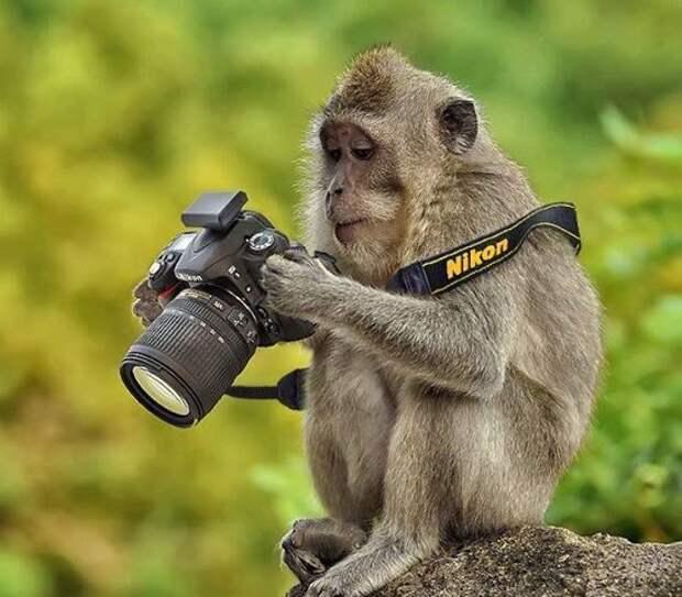 Подборка зачетных картинок и классных фотографий