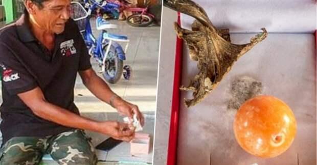 В Таиланде рыбак нашел редкую оранжевую жемчужину, но она принесла ему несчастье