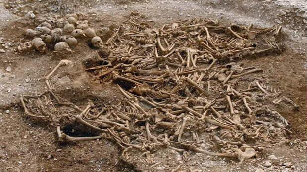 Неожиданный облик викингов узнали по анализу ДНК