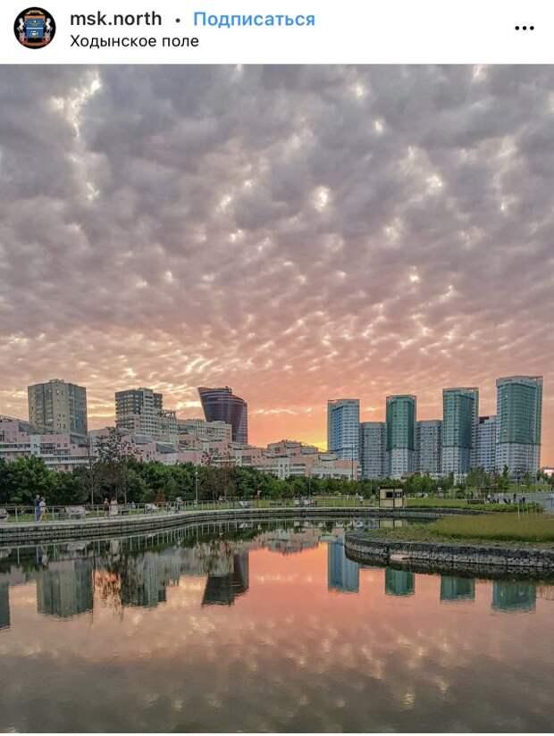 Фото дня: розовый закат на Ходынке