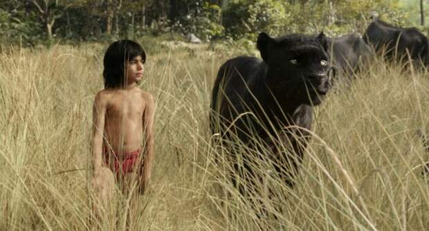 Кадр из фильма «Книга джунглей». / Фото: www.kinopoisk.ru