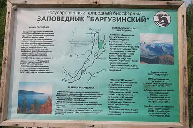 Баргузинский заповедник.