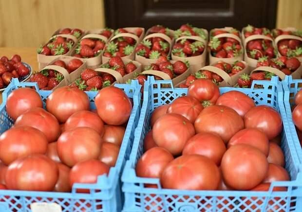 Для фермеров Кубани организуют 2400 торговых мест