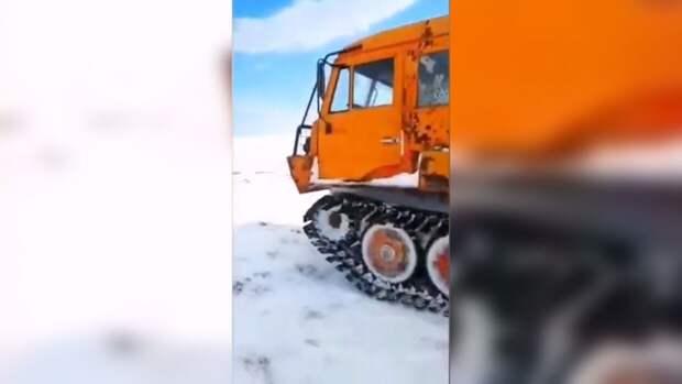 Китайские СМИ: вездеходы «Руслан» обеспечили лидерство России в Арктике