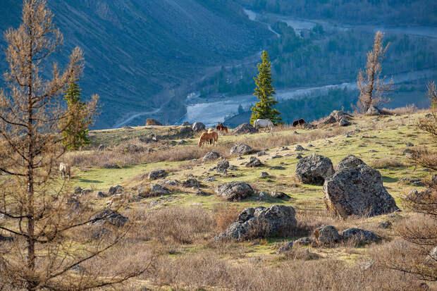 Виды открывающиеся с перевала. В конце статьи им можно лайкнуть;)