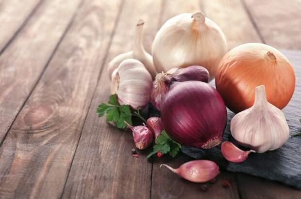 Внимание на температуру и влажность. Как хранить урожай лука и чеснока?