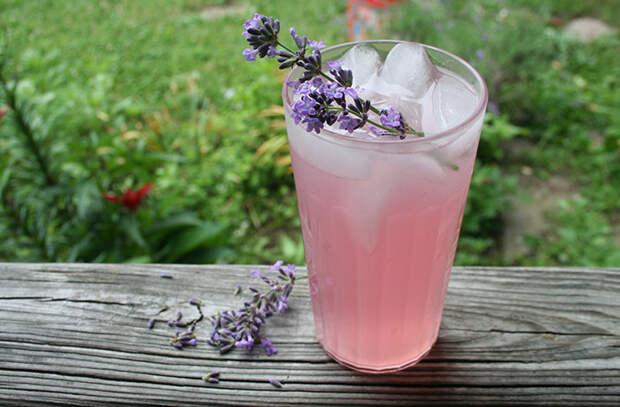 Безалкогольные напитки. Лавандовый лимонад