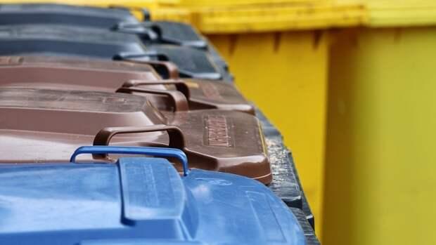 Эксперт по экологии Волкова рассказала, какие предметы нельзя выбрасывать в мусор