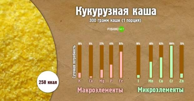 Кукурузная каша инфографика, каша, полезности, польза