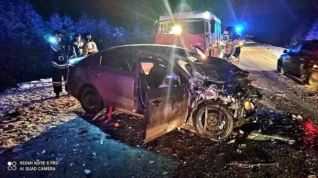 Двое взрослых и ребенок погибли в ДТП на трассе в Удмуртии