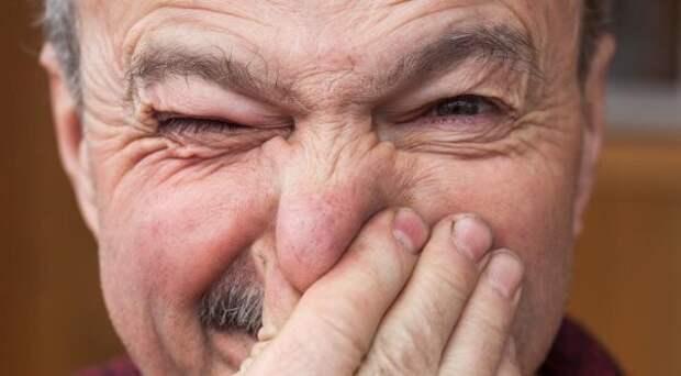 Как победить запах старости при помощи шампиньонов. И другие полезные свойства этих грибов