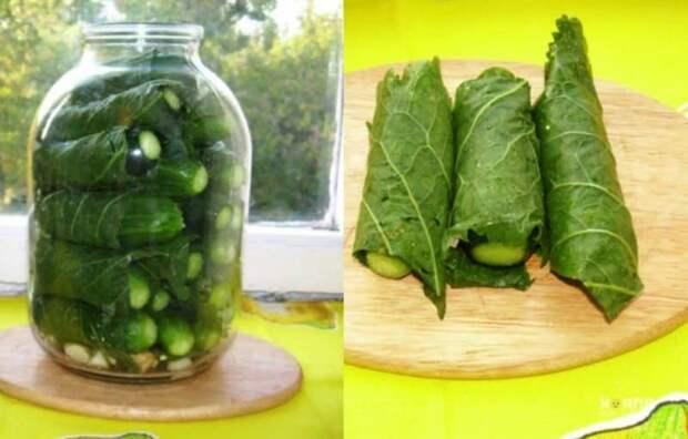 Огурцы в листьях хрена. Рецепт рассчитан на 3-х литровую банку 2