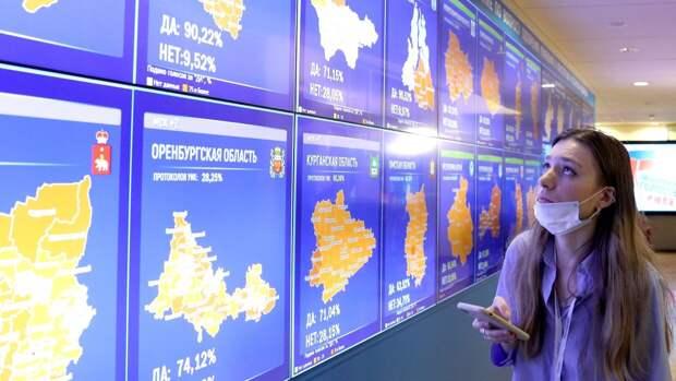 Политолог Елисеева назвала «триумфальной победой» результат голосования по поправкам