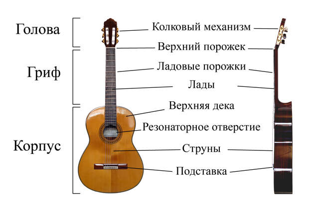 https://upload.wikimedia.org/wikipedia/commons/f/fd/Classical_Guitar_labelled_russian.jpg