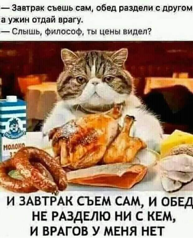 Возможно, это изображение (текст «завтрак съешь сам, обед раздели с другом a ужин отдай врагу. слышь, философ, ты цены видел? молоко и завтрак съем сам, и обед не разделю ни с кем, и врагов у меня HET»)