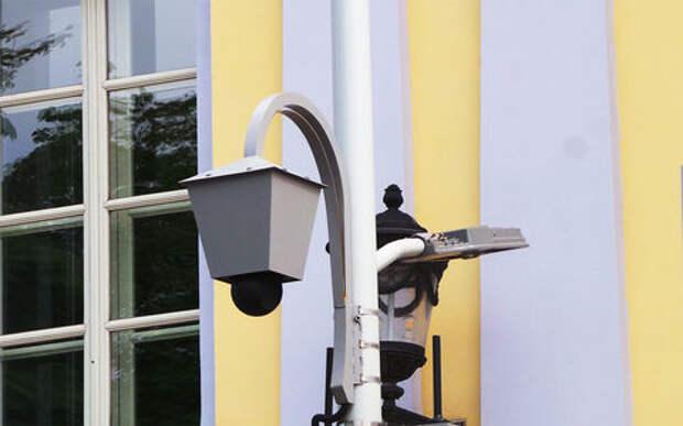 ОНФ: видеокамеры нового типа запустили конвейер нарушителей