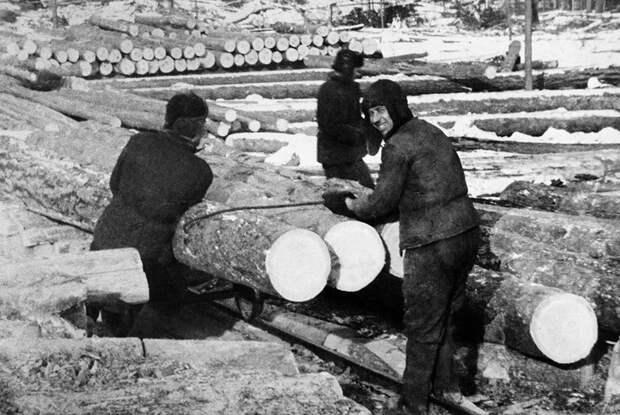 Озерлаг, 1951 год
