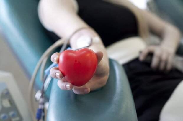 Сотрудники Управления по СЗАО Департамента ГОЧСиПБ присоединились к сдаче крови в Всемирный день донора