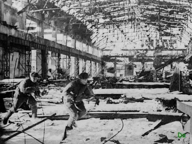 Почему в Европе не было своего Сталинграда  война, европа, страны