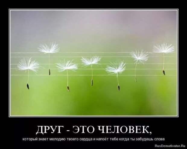 Прикольные демотиваторы с надписями. Подборка chert-poberi-dem-chert-poberi-dem-57570603092020-1 картинка chert-poberi-dem-57570603092020-1
