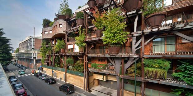 Уголок природы в городе: проект Urban Treehouse