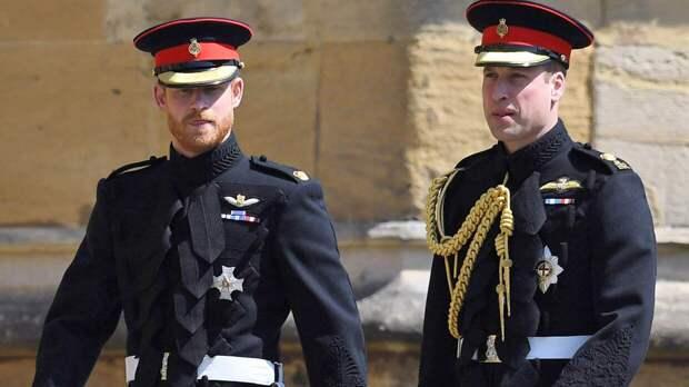 Специалист расшифровал слова принца Уильяма его брату Гарри на похоронах принца Филиппа