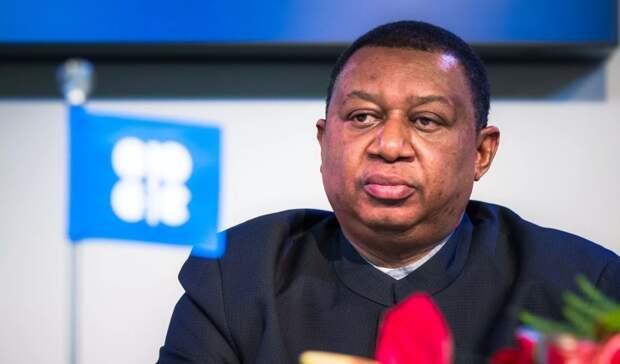 Альянс ОПЕК+ готов скорректировать планы подобыче— Баркиндо