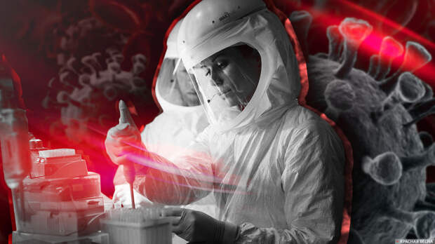 В Нидерландах изъяли около 700 упаковок нелегальных лекарств от COVID-19