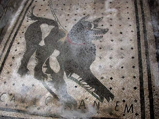 Собака в ошейнике и надпись Cave canem на полу дома в Помпеях.