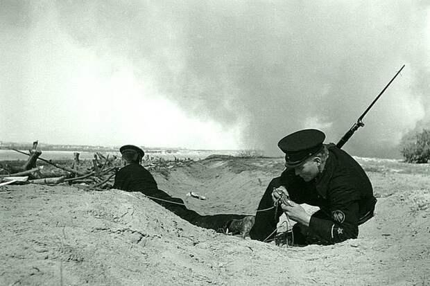 Связист морской пехоты в Сталинграде. Великая Отечественная война, СССР, история