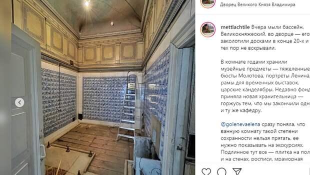 Петербургские активисты привели в порядок бассейн во Владимирском дворце