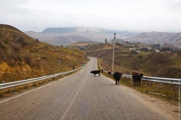 Путешествие в Домбай