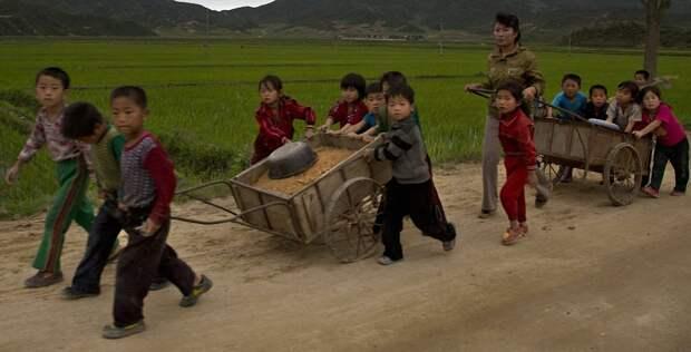 Северная Корея без прикрас в объективе западного фотографа