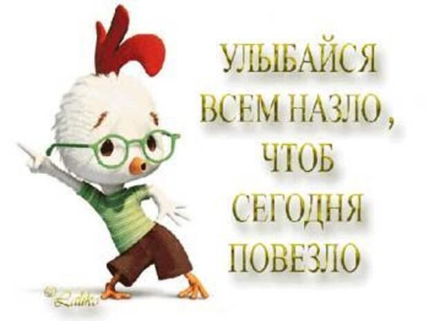 Жизнь как анекдот))