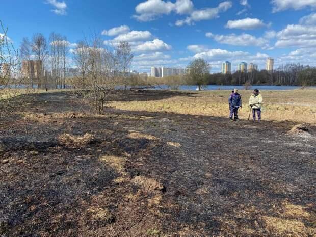 Спасатели ликвидировали возгорание в районе Щукинского полуострова