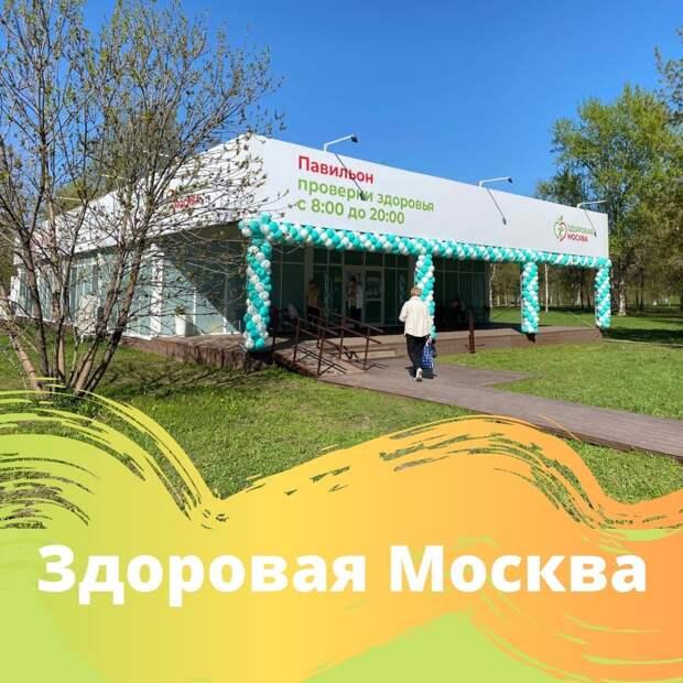 Павильон «Здоровая Москва» заработает в сквере по Олонецкому проезду