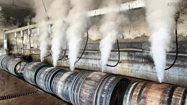 В Крыму раскрыли уникальность винзавода «Коктебель», выставленного на продажу