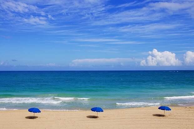 На Кубани ожидается жара до +36 градусов