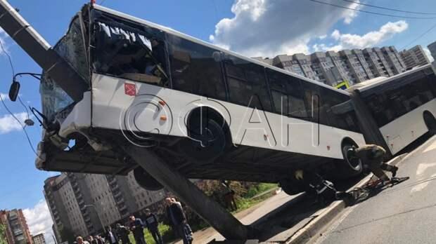 Все автобусы в Петербурге внепланово проверят после аварии со столбом