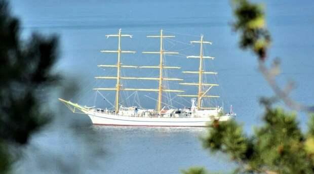 «Эскадра памяти» прошла по Севастопольской бухте после парада в честь Дня Победы