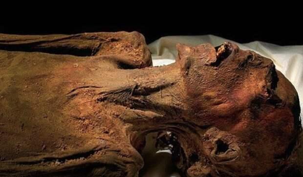 Тайна Кричащей мумии оказалась страшнее, чем думали археологи. Вот, кто на самом деле убил фараона!